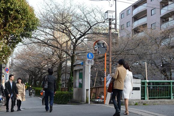 ドラマ「最高の離婚」中目黒・目黒川
