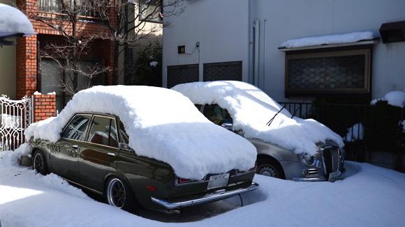 世田谷・目黒 大雪風景