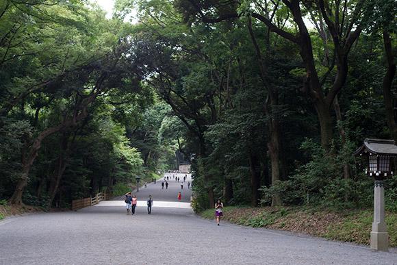 明治神宮は代々木公園に比べ、結構な人が居ました。