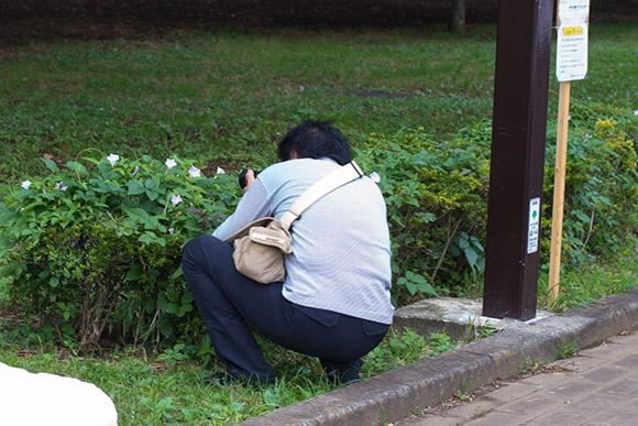 園内の花を撮影するカメラマン