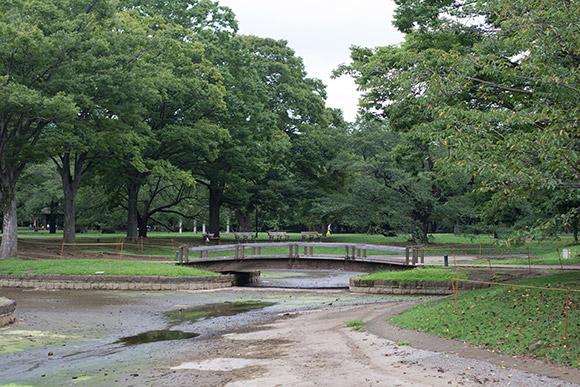 橋がかかった池の水も抜かれています