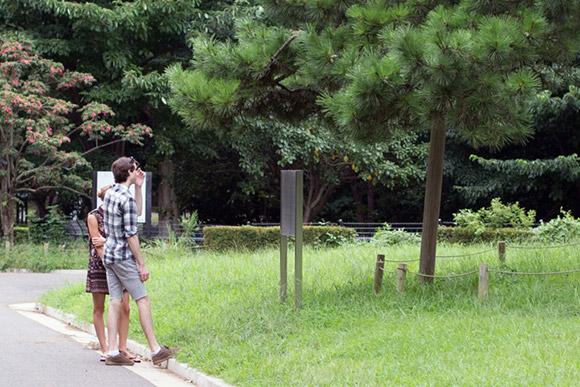 外国人カップルが、園内を散歩してました。