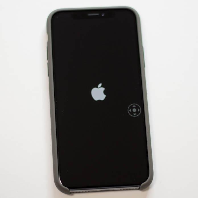 Apple純正 iPhone シリコーンケース iPhone Xを入れたところ