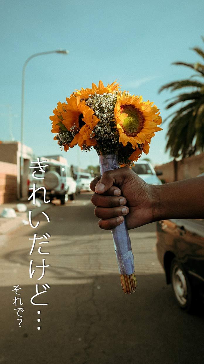 花束と言葉「きれいだけど……それで?」